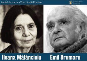 Poster Ileana Malancioiu si Emil Brumaru